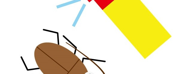ゴキブリの夢を見たときの意味とその時の7つの対処法