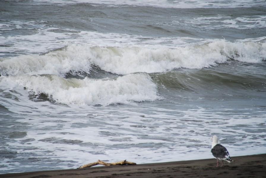 津波 の 夢 の 意味 【夢占い】波・津波の夢の意味31選|来る・飲まれる・逃げるなど状況...