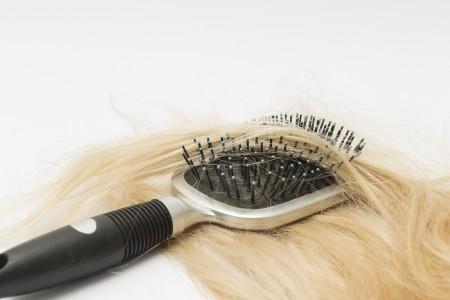 髪の毛とブラシ
