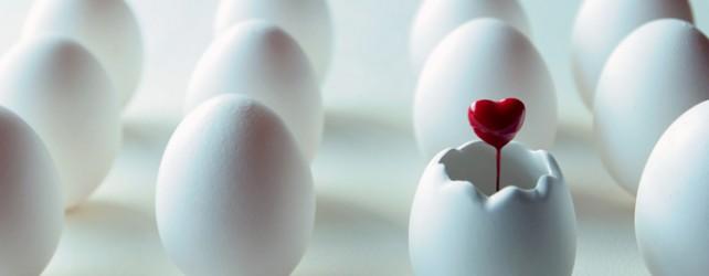 卵の夢を見たときの5つの意